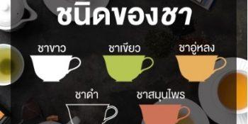 มารู้จักชนิดของชากันเถอะ